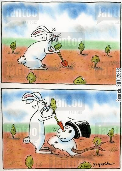 allotment cartoon humor: Rabbit Pulls Up Carrot Attached to Snowman.