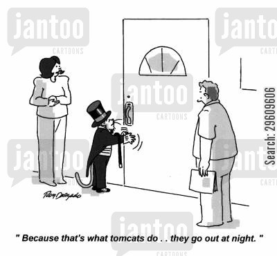 posh cartoon humor: 'Because that's what tomcats do... they go out at night.'