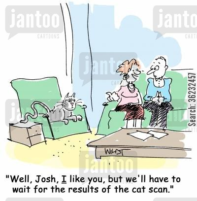 cat lady cartoon humor: Well, Josh, I like you, but we'll have to for the results of the cat scan.