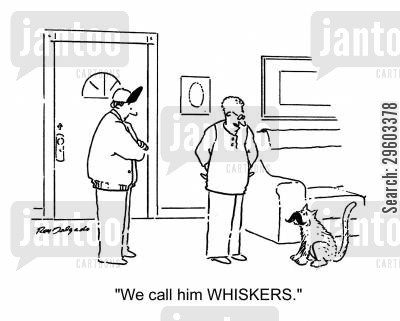 facial hair cartoon humor: 'We call him Whiskers.'