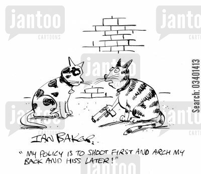 armed cartoon humor: 'My policy is to shoot first and arch my back and hiss later!'