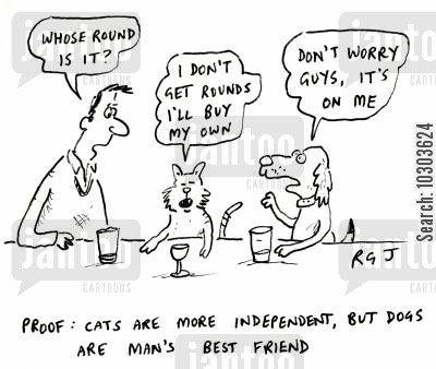 drinks round cartoon humor: Proof: Cats are more independent, but dogs are man's best friend.