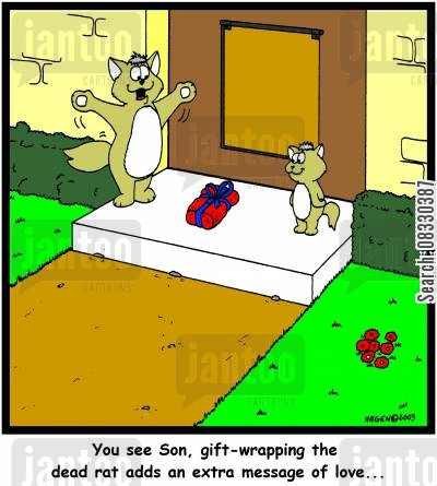 gift wrap cartoon humor: 'You see Son, gift-wrapping the dead rat adds an extra message of love...' (colour)