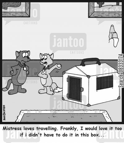 cat boxes cartoon humor: 'Mistress loves travelling. Frankly, I would love it too if I didn't have to do it in this box...'