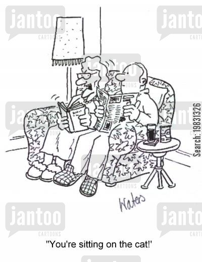 sit cartoon humor: 'You're sitting on the cat,,,'