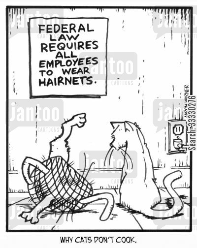 cat hair cartoon humor: Why cats don't cook. (sign on wall reads: Federal Law requires all employees to wear hairnets)
