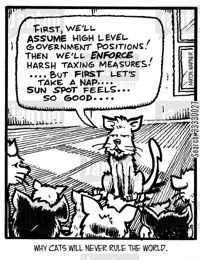 rule the world cartoon humor: Why cats will never rule the world: 'First, we'll assume high level government positions! Then we'll enforce harsh taxing measures! ...But first let's take a nap...sun spot feels...so good.'