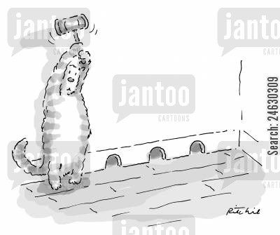 natural predators cartoon humor: Cat with a mallet waiting for mouse to come out of one of 3 mouse holes.