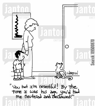 neuters cartoon humor: 'You bet I'm resentful! By the time I was his age you'd had me neutered and declawed!'