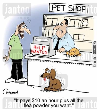 rates cartoon humor: 'It pays $10 an hour plus all the flea powder you want.'