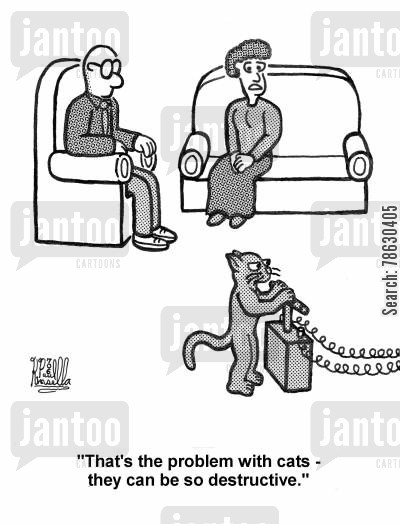 cat behaviour cartoon humor: 'That's the problem with cats - they can be so destructive.'