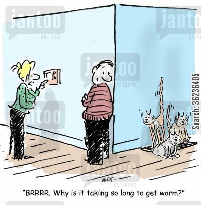 selfish cat cartoon humor: 'BRRRR. Why is it taking so long to get warm?'