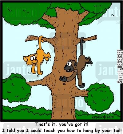 tree monkey tree cartoon humor: 'That's it, you've got it! I told you I could teach you how to hang by your tail!'