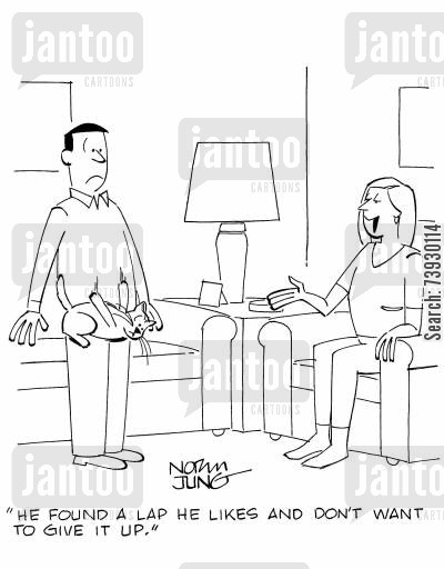 stubbornness cartoon humor: 'He found a lap he likes and don't want to give it up.'