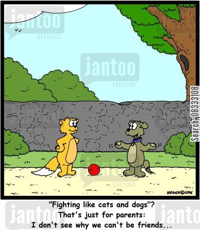 fighting like cats and dogs cartoon humor: ''Fighting like cats and dogs'? That's just for parents: I don't see why we can't be friends...'
