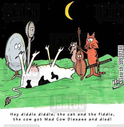 mad cow cartoon humor: Hey diddle diddle, the cat and the fiddle, the cow got Mad Cow Disease and died!
