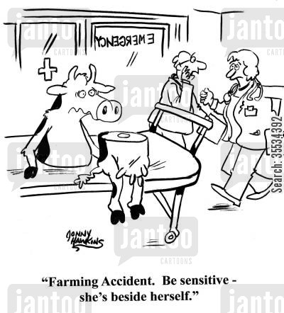 farming accident cartoon humor: Emergency room doctor about half cow: 'Farming accident. Be sensitive - she's beside herself.'