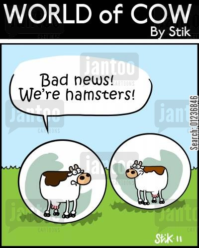 hamster balls cartoon humor: 'Bad news! We're hamsters!'