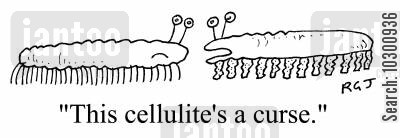 thunder thighs cartoon humor: This cellulite's a curse
