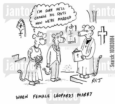 changing spots cartoon humor: When Female Leopards Marry.