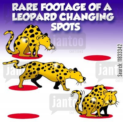 changing spots cartoon humor: Rare footage of a leopard changing spots.