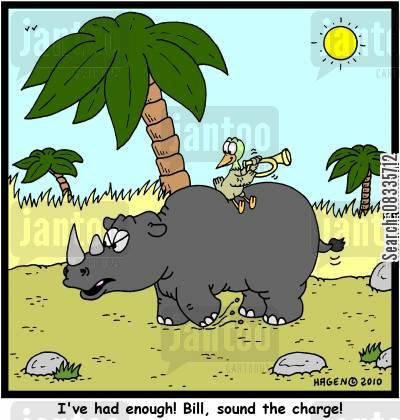charging rhinos cartoon humor: 'I've had enough! Bill, sound the charge!'