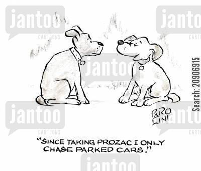 happy pills cartoon humor: 'Since taking Prozac I only chase parked cars'