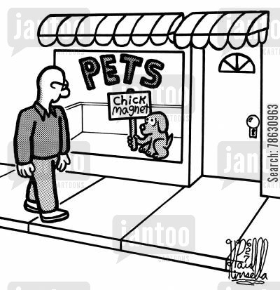 chick magnet cartoon humor: Pets: 'Chick magnet.'