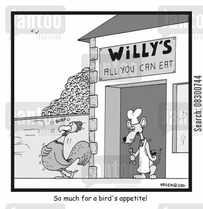 all you can eat buffet cartoon humor: So much for a bird's appetite!