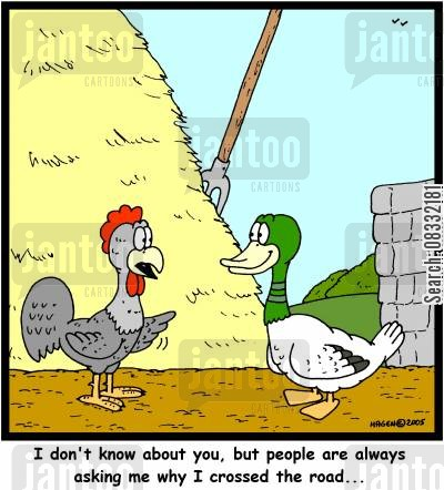 old joke cartoon humor: 'I don't know about you, but people are always asking me why I crossed the road...'