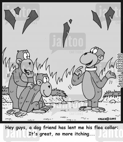 nits cartoon humor: 'Hey guys, a dog friend has lent me his flea collar: It's great, no more itching...'