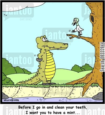 meateater cartoon humor: Before I go in and clean your teeth, I want you to have a mint...