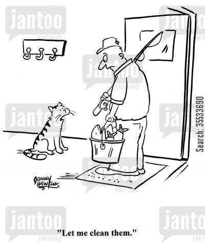 cat habits cartoon humor: Cat to fisherman about his caught fish: 'Let me clean them.'