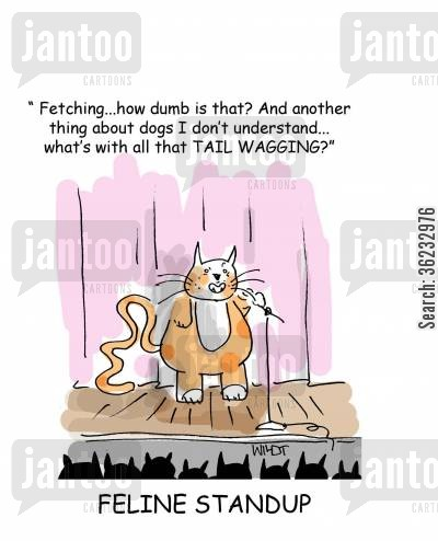 humorous cartoon humor: Feline Stand Up - 'Fetching...how dumb is that? And another thing I don't understand...what's with all that TAIL WAGGING?'