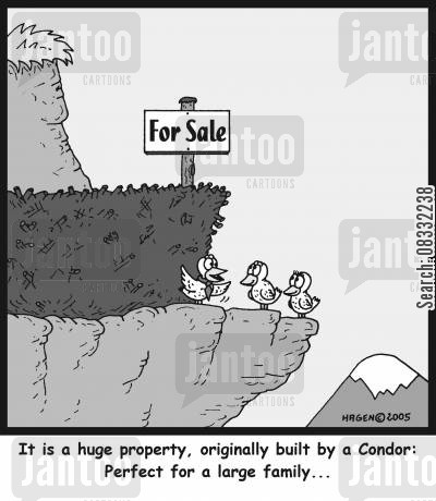 property sales cartoon humor: 'It is a huge property, originally built by a Condor: Perfect for a large family...'
