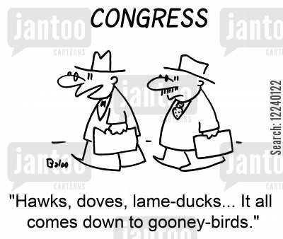 lame ducks cartoon humor: 'Hawks, doves, lame-ducks... It all comes down to gooney-birds.'