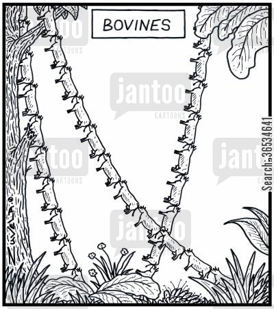 rainforest cartoon humor: Bovines Herds of Cows in the form of Jungle vines
