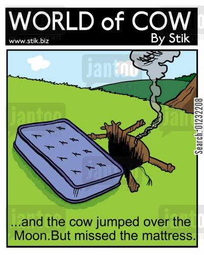 accident prone cartoon humor: ...and the cow jumped over the Moon. But missed the mattress.