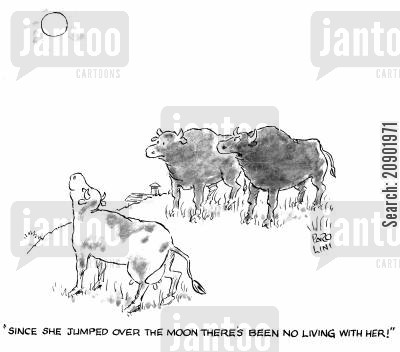 jumping cows cartoon humor: 'Since she jumped over the moon there's been no living with her.'