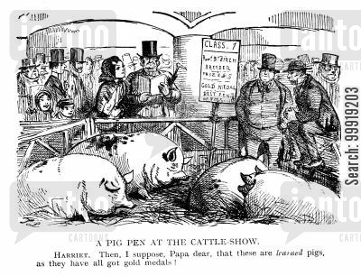 cattle show cartoon humor: A Pig Pen At The Cattle Show