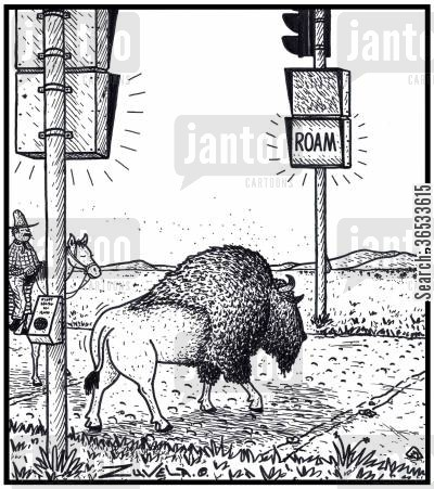 bison cartoon humor: ROAM: the Buffalo's Bison's version of a Don't Walk Walk signs.