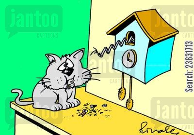 cuckoo clocks cartoon humor: Cat eats the bird from a cuckoo clock.