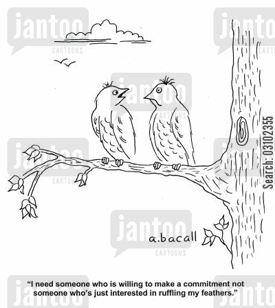 ruffling feathers cartoon humor: 'I need someone who is willing to make a commitment not someone who's just interested in ruffling my feathers.'