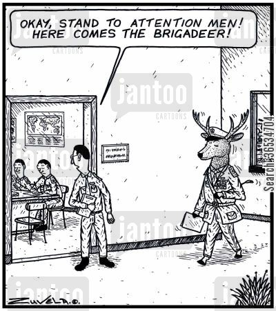 stand to attention cartoon humor: Army PR: 'Okay,stand to attention men! Here comes the Brigadeer!'