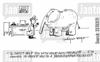 health care service cartoon humor: 'I can't help you with your skin problem...I'm going to refer you to a pachydermatologist.'