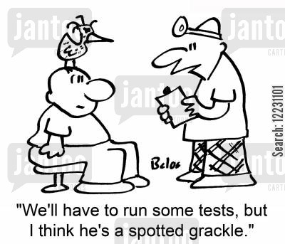 rare bird cartoon humor: 'We'll have to run some tests, but I think he's a spotted grackle.'