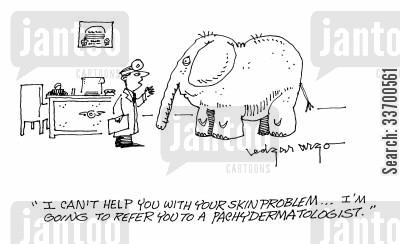 pachydermatologist cartoon humor: 'I can't help you with your skin problem...I'm going to refer you to a pachydermatologist.'