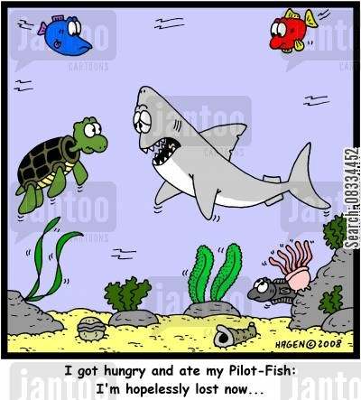 pilot fish cartoon humor: 'I got hungry and ate my Pilot-Fish: I'm hopelessly lost now...'