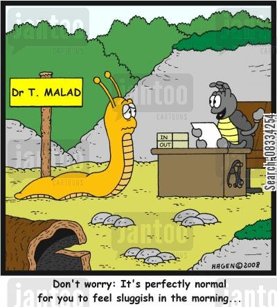diagnostic cartoon humor: 'Don't worry: It's perfectly normal for you to feel sluggish in the morning...'
