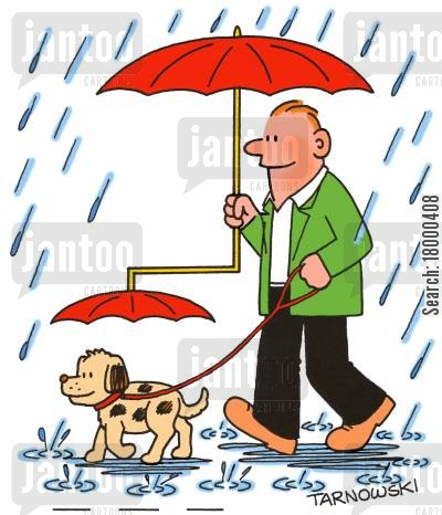 shelter cartoon humor: Umbrella with attachment for a dog.